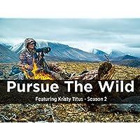 Pursue The Wild