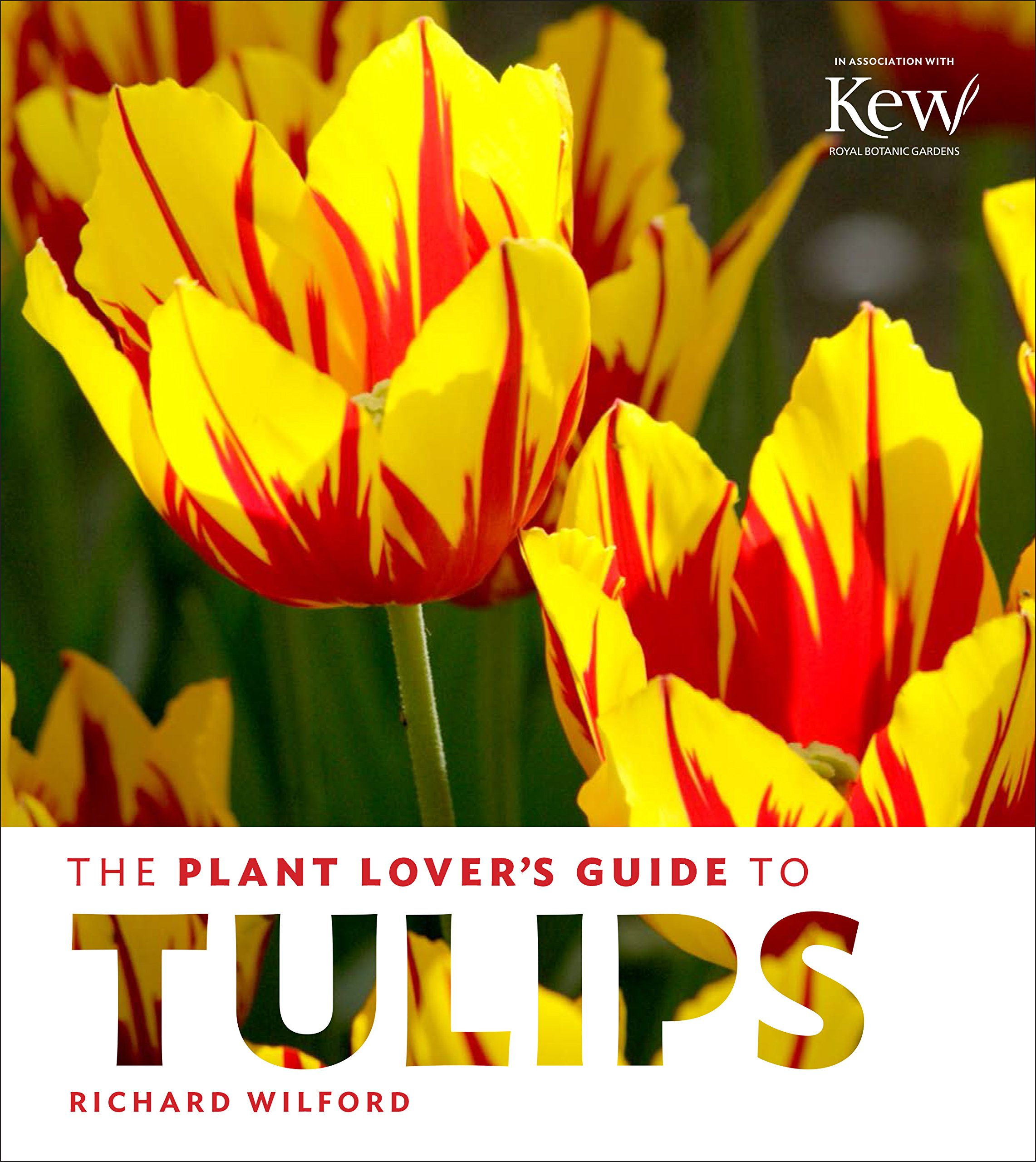 The Plant Lover's Guide to Tulips (The Plant Lover's Guides) by Timber Press