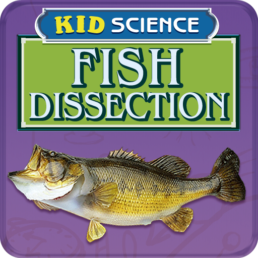 Fish Dissection - Dissection Lab