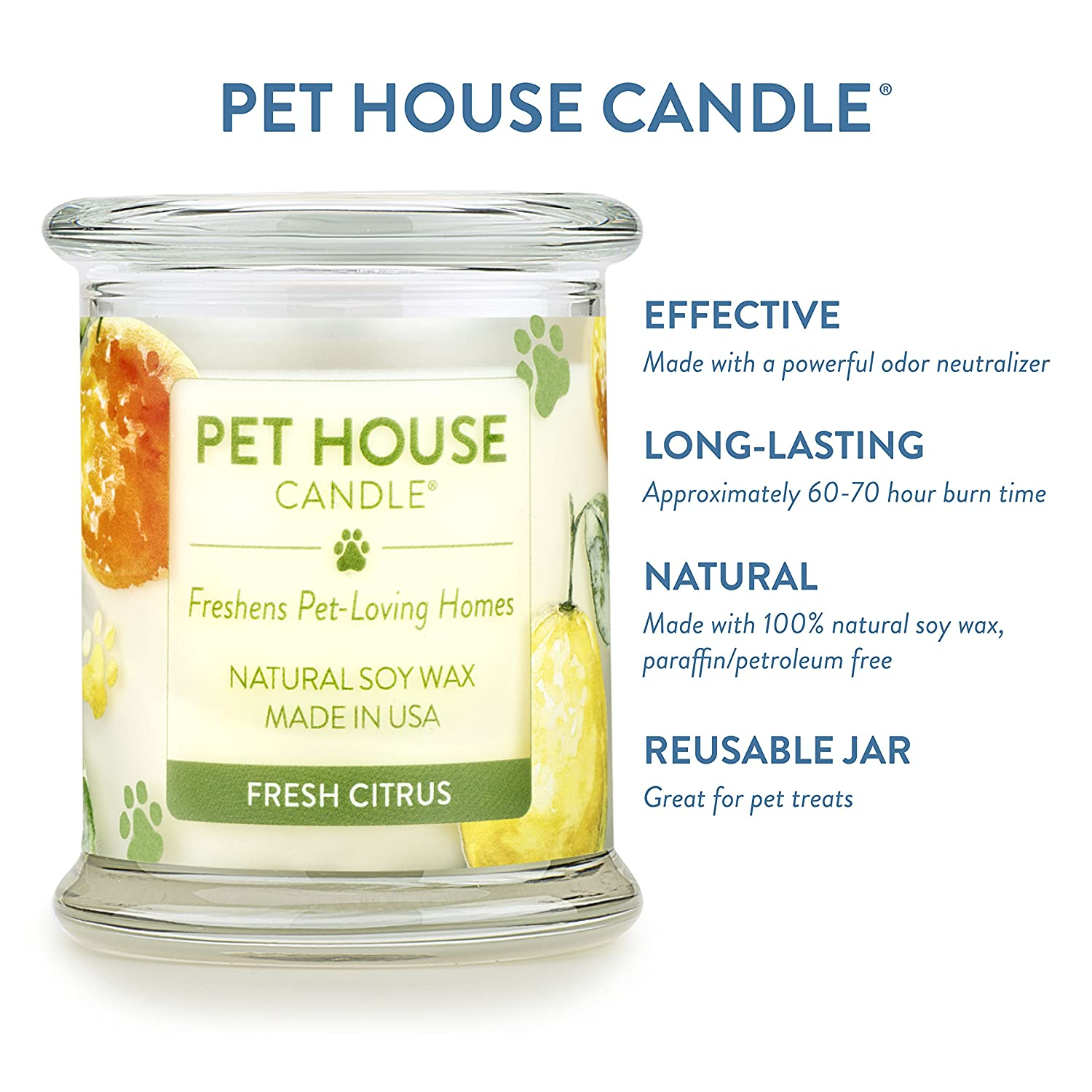 Amazon Pet House Candle in Fragrances All Natural Soy