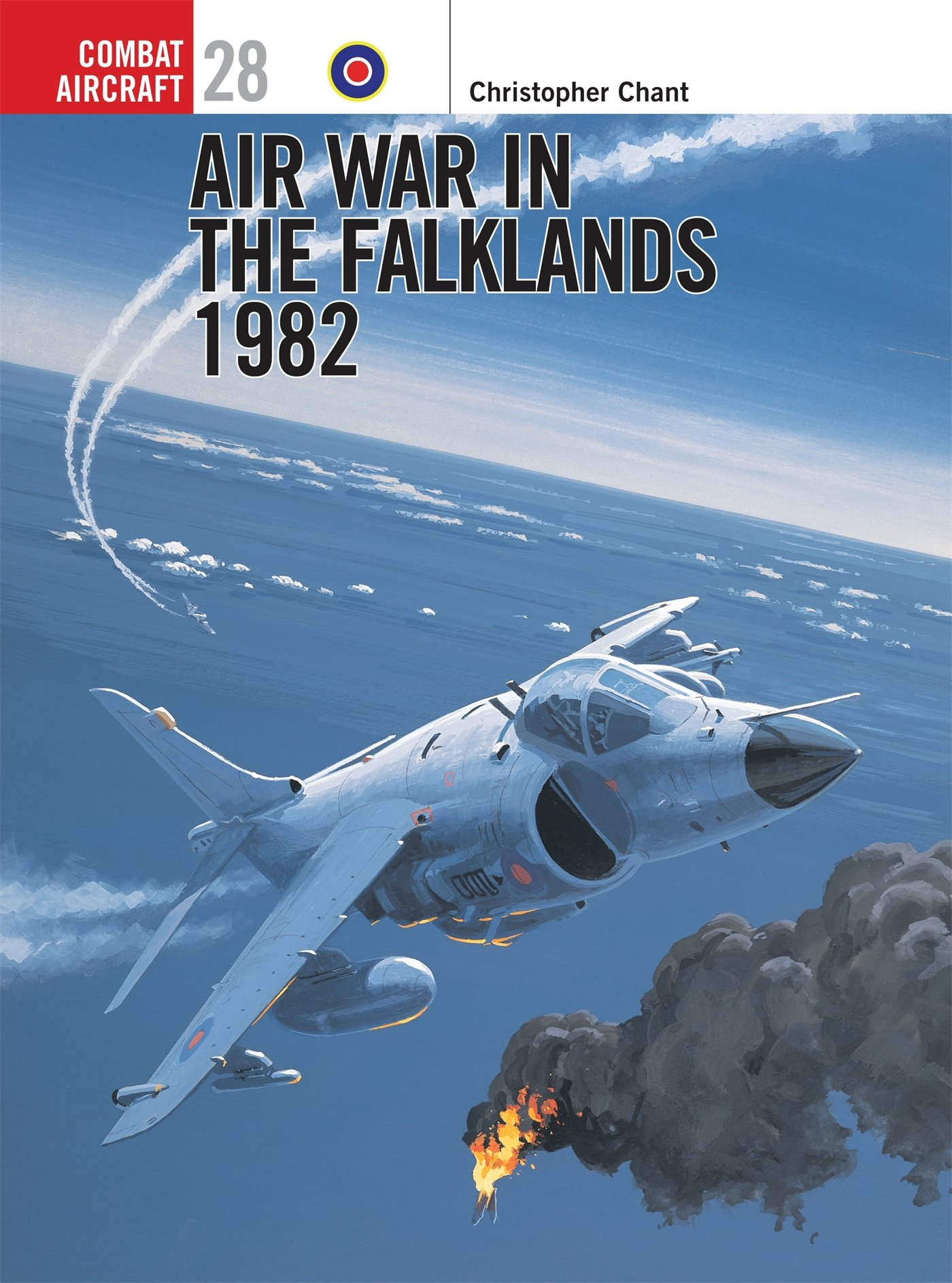 Air War in the Falklands 1982 (Osprey Combat Aircraft 28