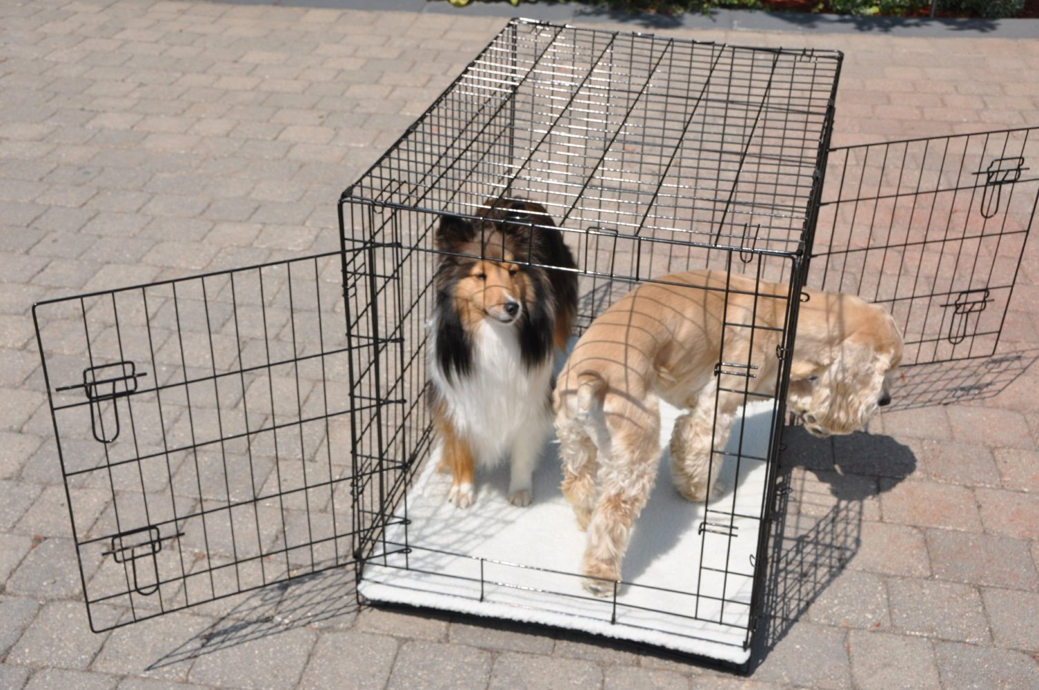 Cool Runners Tall Boy Large Wire Pet Crate 30'' x 21'' x 24'' With Bonus Faux Sheepskin Mattress by Cool Runners (Image #4)