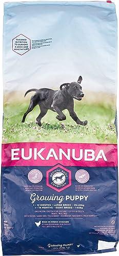 Eukanuba-Growing-Puppy-Junior-Trocken-Hundefutter