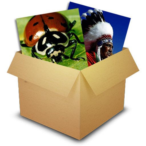 Puzzle Box -