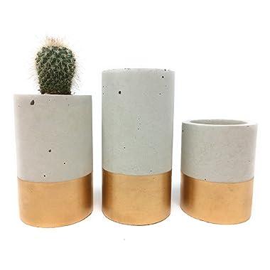 Concrete Succulent Planters/Air Plant Holders. Urba planters (set of 3) Gold. Cement Succulent pots. Modern Planter set