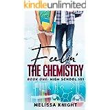 Feelin' the Chemistry: High School 101 - Book #1