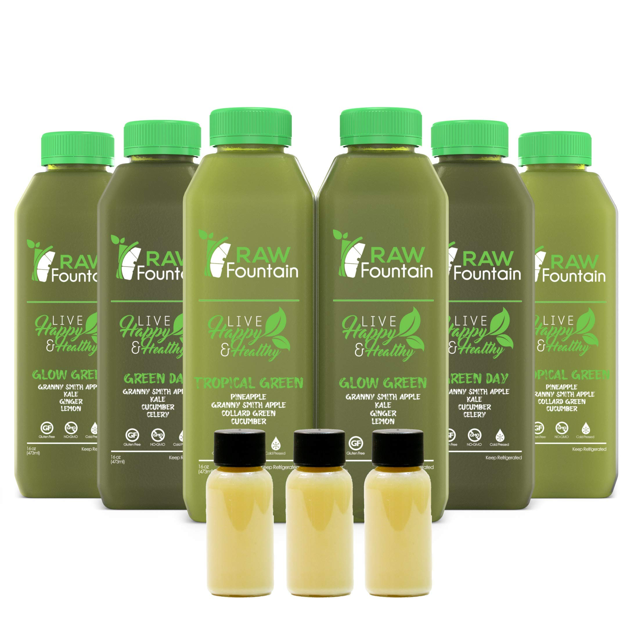 5 Day All Green Juice Cleanse by Raw Fountain - 100% Fresh Natural Organic Raw Green Juices - Give Your Body The Detox It Deserves! - 30 Bottles (16 fl oz) + 5 Bonus Ginger Shots (5 Day)