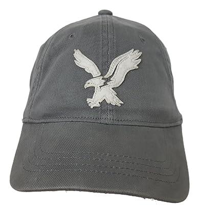 9740724580de5 American Eagle Outfitters Grey w  White Big Eagle Baseball Cap L XL  Amazon.co.uk   Clothing