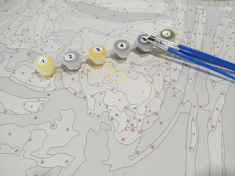 sans Cadre DIY Peinture par Numero Kits pour Enfants Adultes-Fleurs-Personnalit/é Artistique Jeu Amusant Cadeau Jouet Amusant Convient Aux Amis De La Famille 40X50Cm
