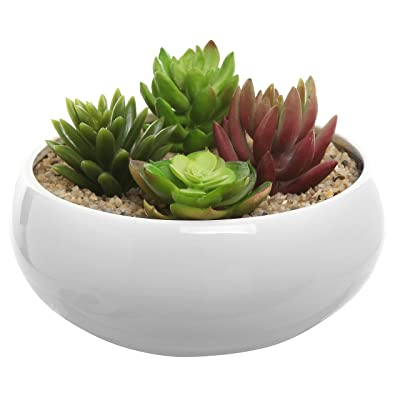 MyGift 8.75 Inch Round Ceramic Planter, Decorative Flower Plant Pot, White: Garden & Outdoor