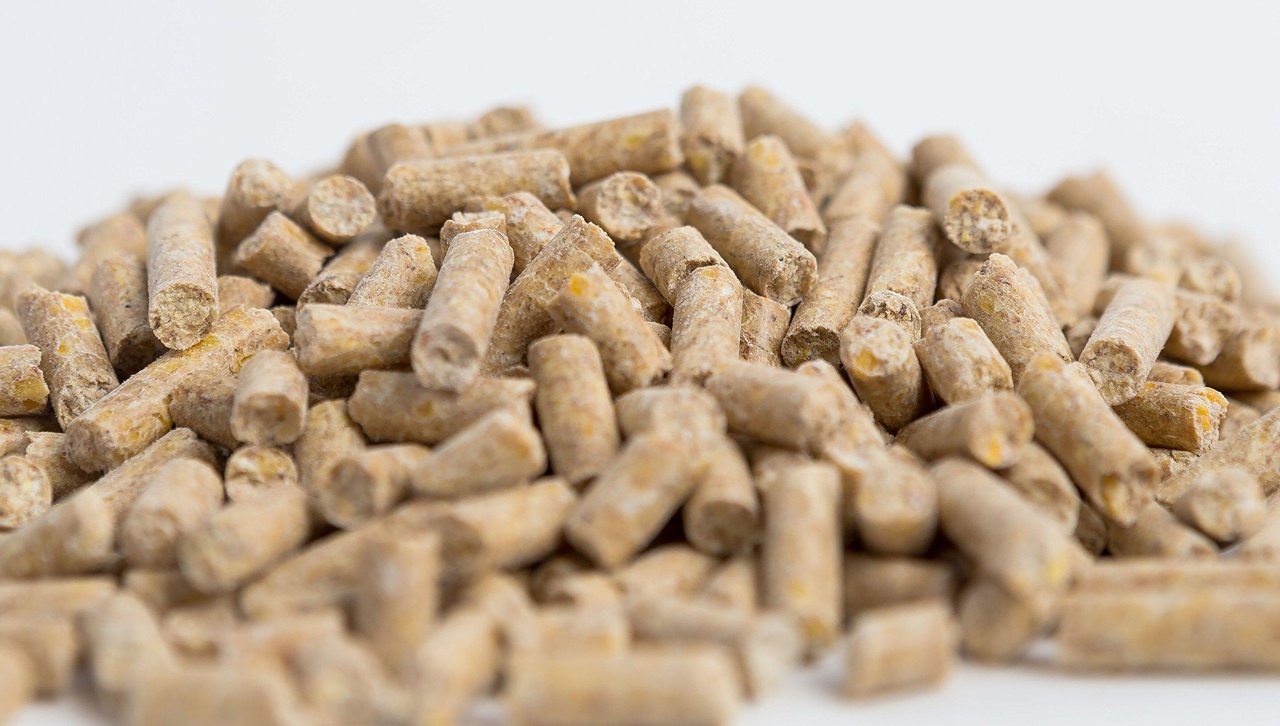 Horse Guard Mega Dose Equine Vitamin Mineral Hoof & Probiotic Supplement, 40 lb by Horse Guard (Image #5)