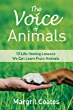 The Voice of Animals: 10 Life-Healing Lessons We Can Learn From Animals