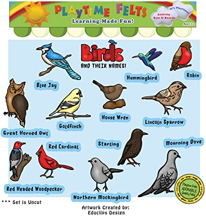 Blue Bird Names >> Amazon Com Playtime Felts Birds And Their Names Felt Set For