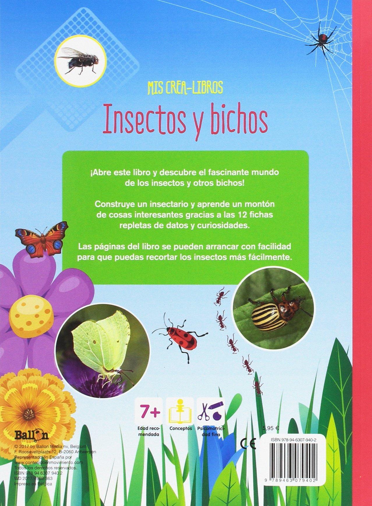 Insectos y bichos (Mis crea-libros): Amazon.es: Ballon, Ballon, Codina Stein, Teresa: Libros