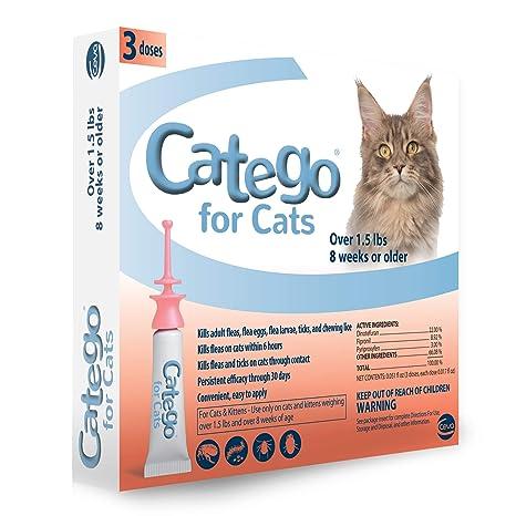 Categorías: Control de pulgas y garrapatas de los Gatos (3 ...