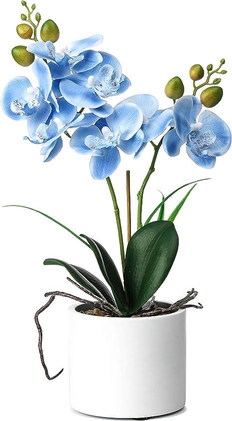 Amazon Com Jusdreen Artificial Flower Bonsai With Vase Vivid Orchid Flower Arrangement Phalaenopsis Flowers Pot For Home Office Decor House Decorations Blue Orchid Furniture Decor