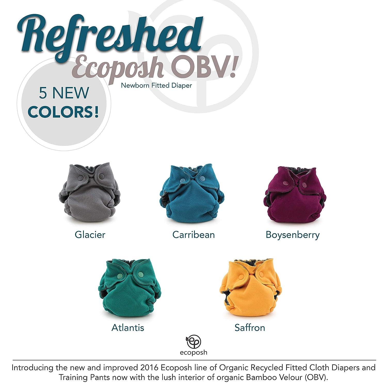 Ecoposh OBV Newborn Fitted Cloth Diaper, Boysenberry