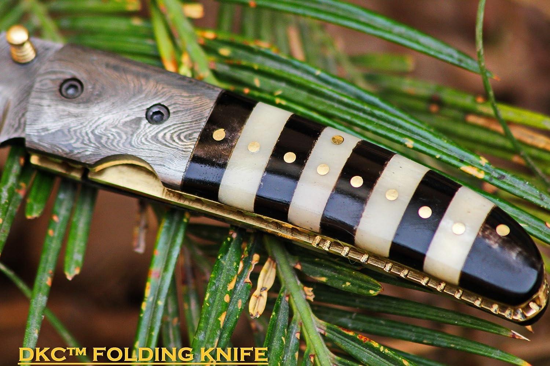 Knife Bumblebee: description, characteristics 41