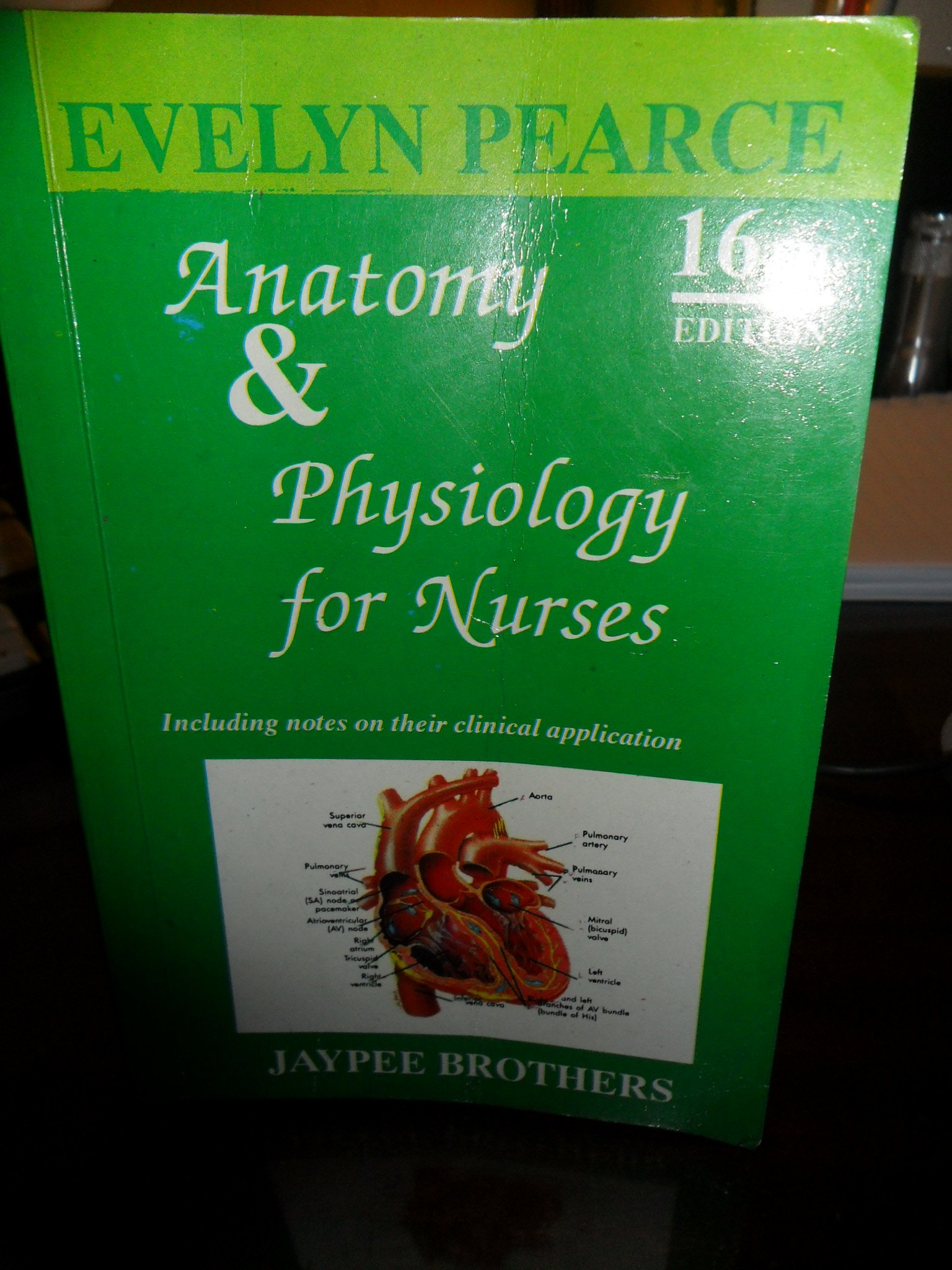 Anatomy & Physiology for Nurses (16th) Sixteenth Edition: Evelyn ...