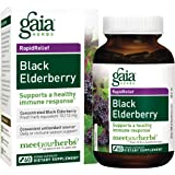 Gaia Herbs Black Elderberry, Vegan Powder Capsules, 60 Count - Sambucus Elderberry Extract for Daily Immune Support
