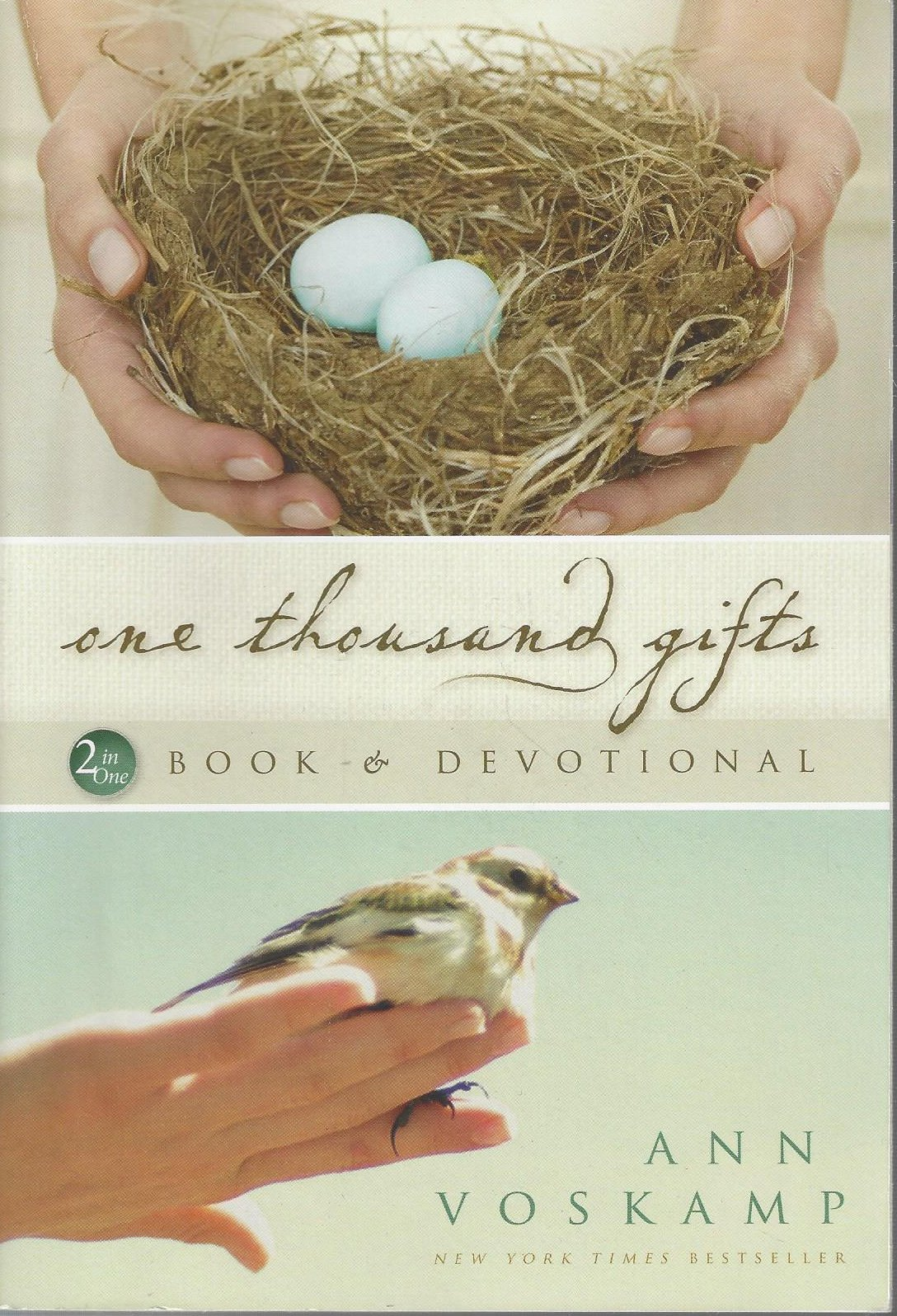 Download One Thousand Gifts 2 in One BOOK & DEVOTIONAL pdf