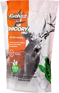 Evolved Harvest Chicory Pro Plot Mixer 1 Lb Bag | Chicory Food Plot Additive for Extra Nutrition