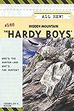 Hidden Mountain (The Hardy Boys Book 186)