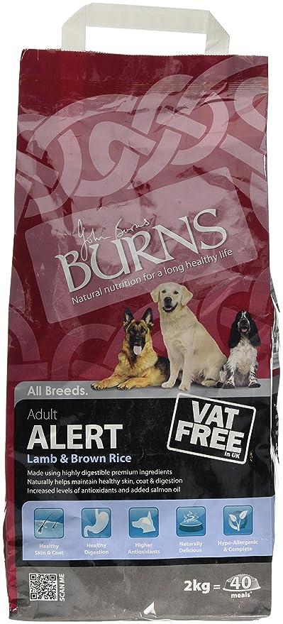 Burns Alert Lamb Dry Dog Food 2Kg