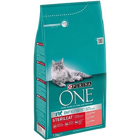 Purina ONE Bifensis Pienso para Gatos Esterilizados Salmón y Trigo 6 x 1,5 Kg