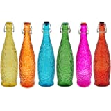 PapyrusBolsys Glass Bottles, 1 Liter, 6 Pieces, Multicolour