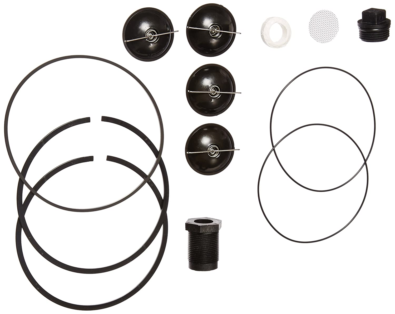 Fill-Rite 5200KTF1828 Fuel Transfer Pump Repair Kit for Series 5200 Tuthill