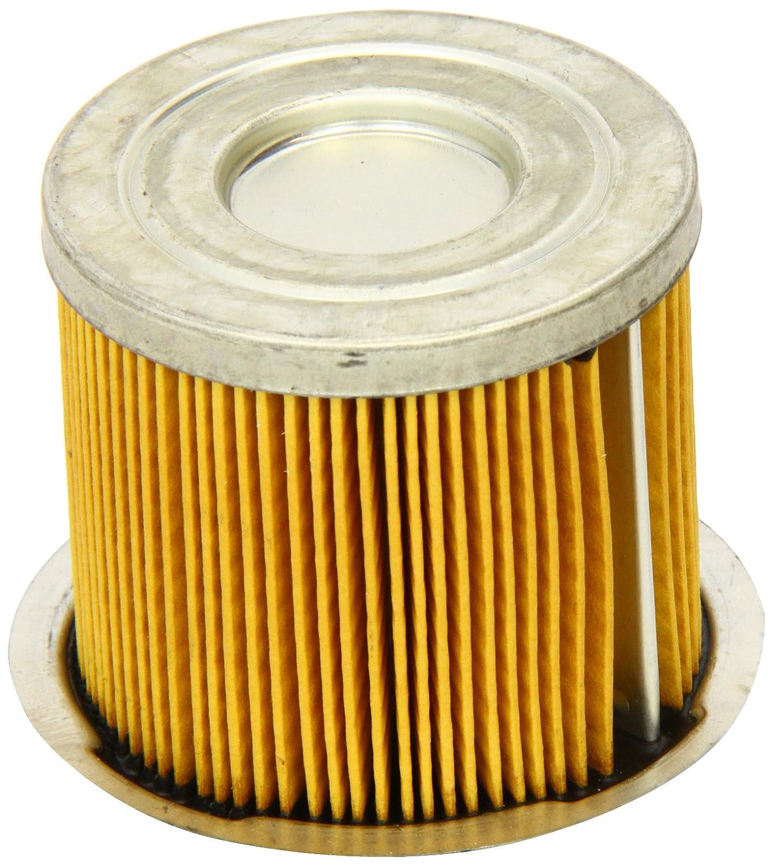 Fram C5563 Filtre à carburant SOGEFI
