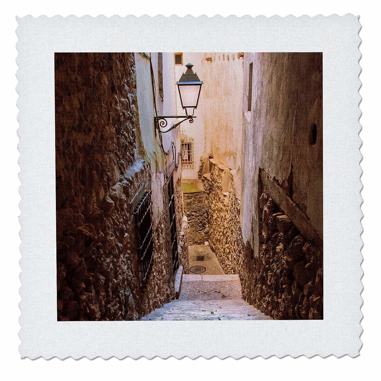 3D Rose Spain Cuenca Alley Square Quilt 25 x 25