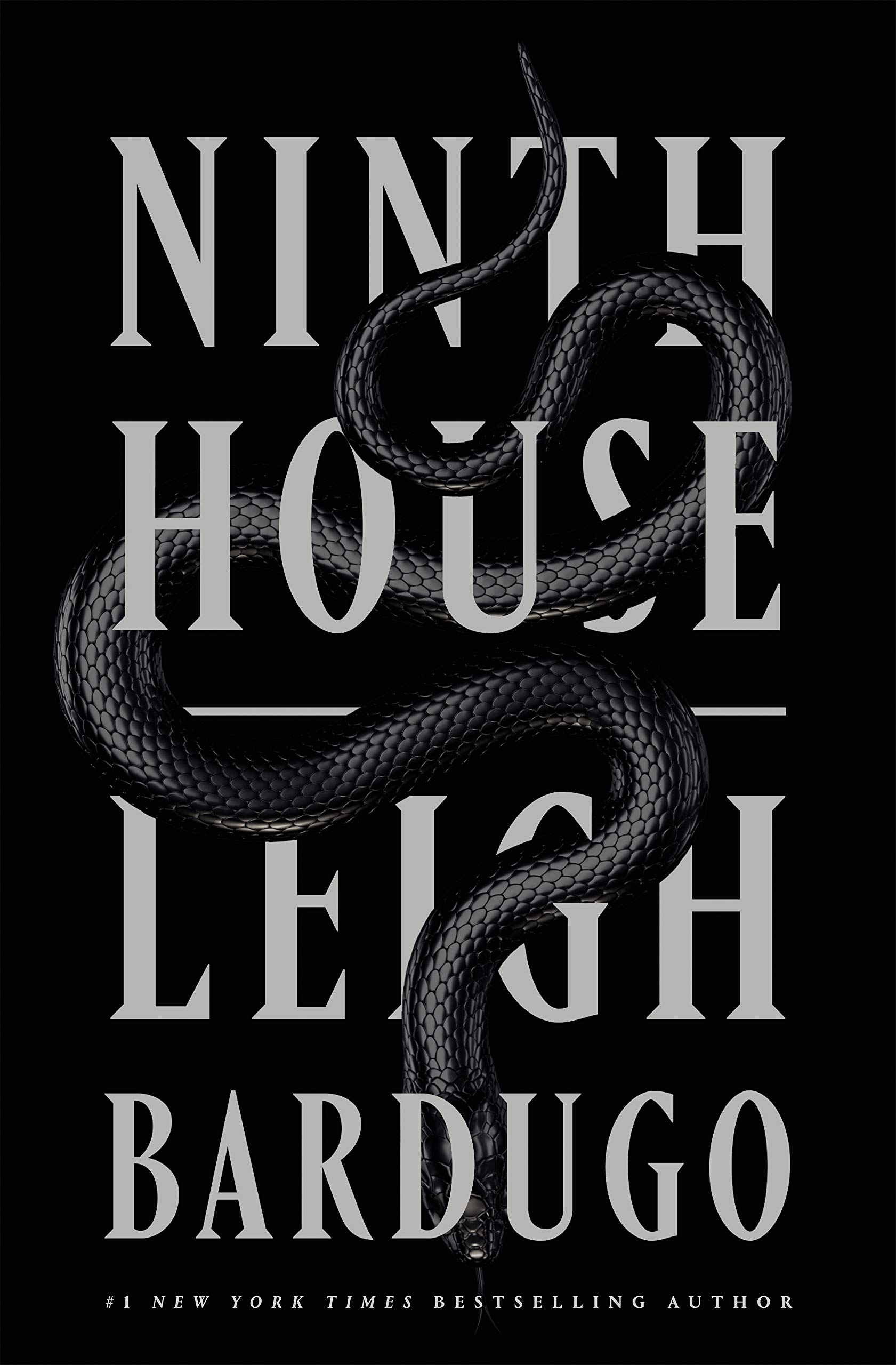 Image result for ninth house book cover