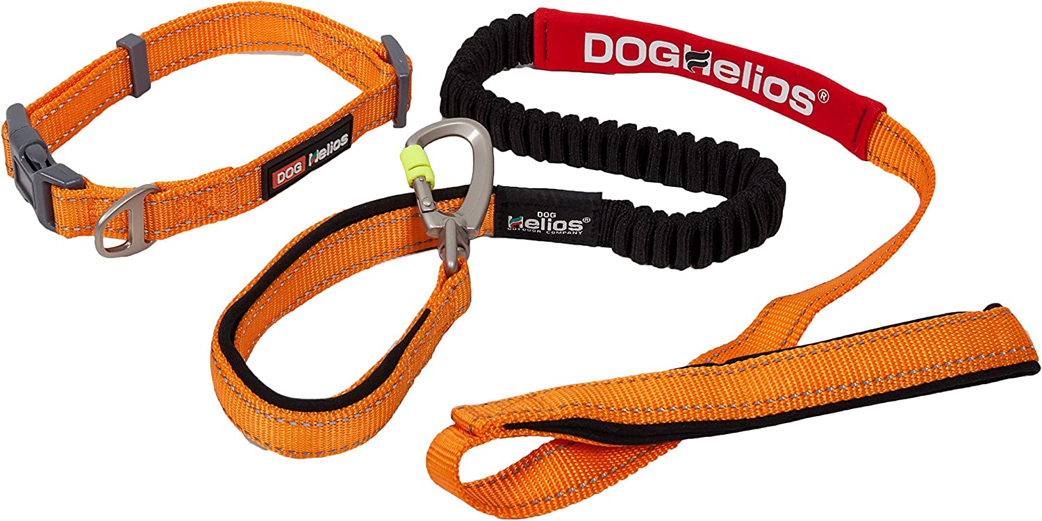 DOGHELIOS Neo-Indestructible Embroidered Thick Durable Pet Dog Leash And Collar