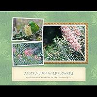 Australian Wildflowers: Grevilleas And Banksias In The Garden Of Oz