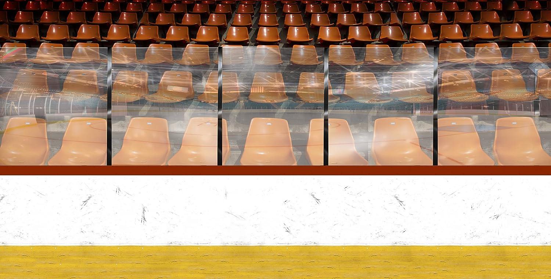 写真バックドロップ – Hockey Rink – 20 x 10 ft。 – 高品質シームレスなファブリック   B00P1IQZPK