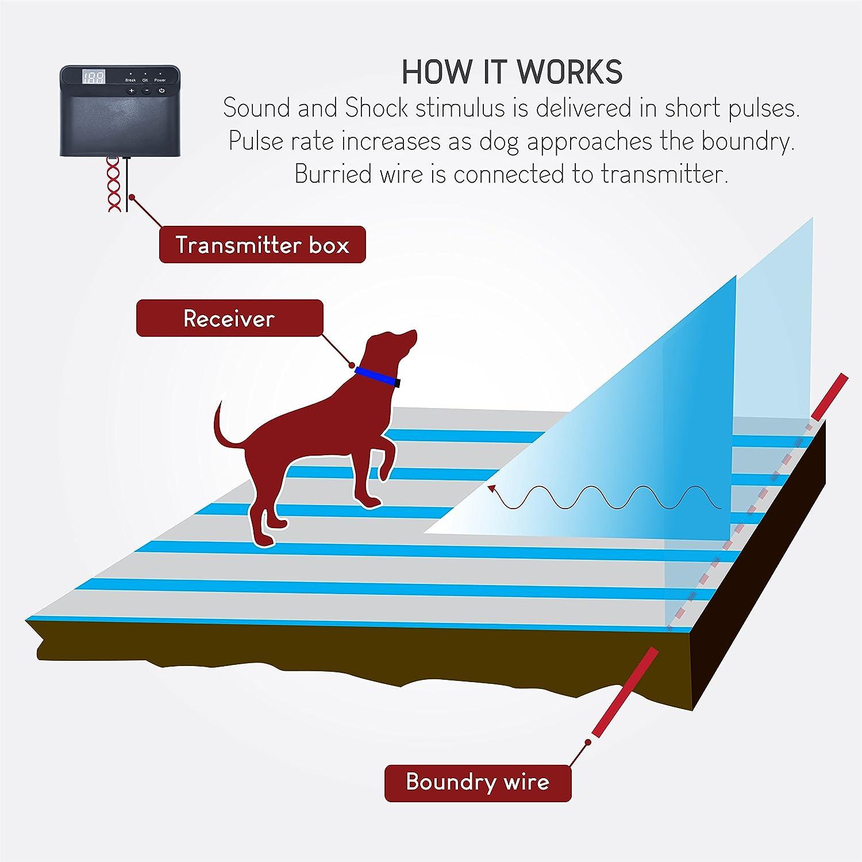 Amazon.com : Electric Dog Fence - Invisible Perimeter Fence Prevents ...