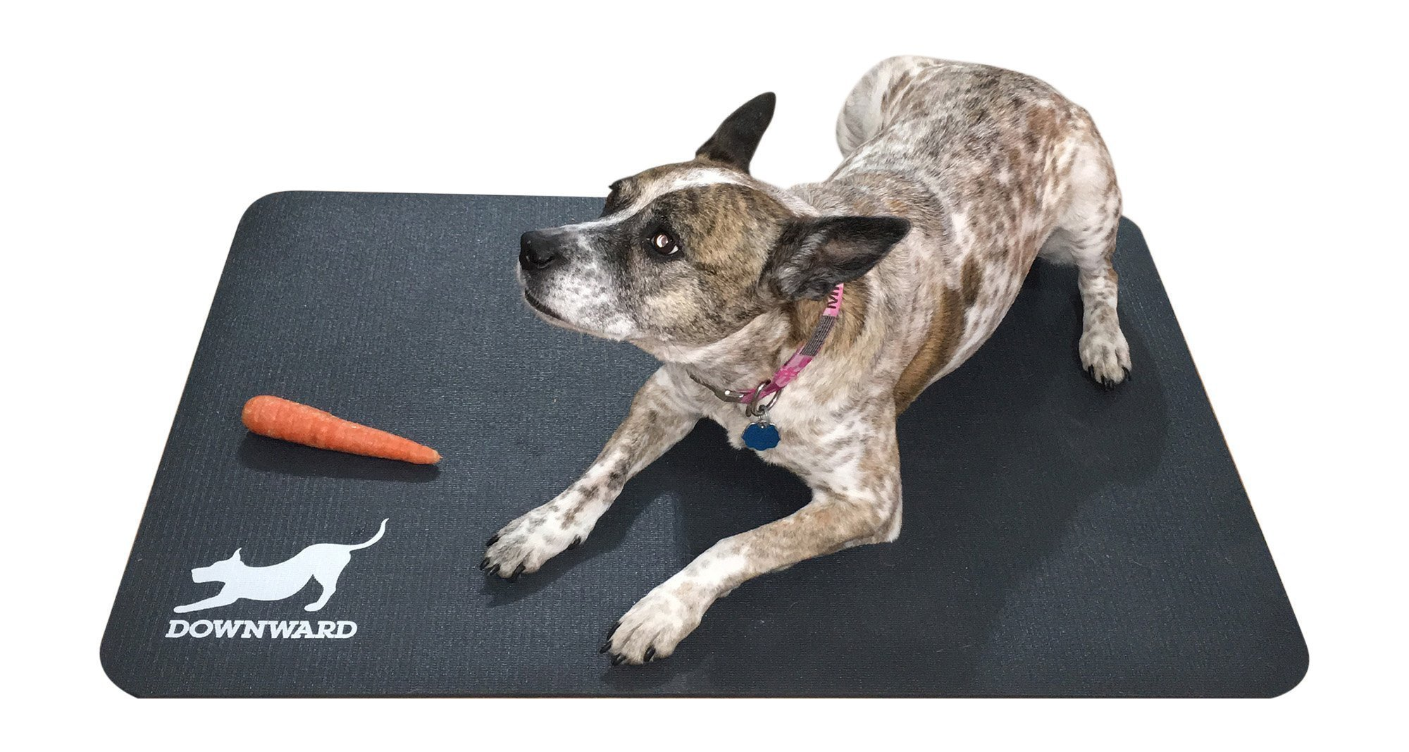 Downward Dog Mat (Large) - Hypo-Allergenic Slip-Resistant Waterproof Rugged High-Density Rubber Cushioning