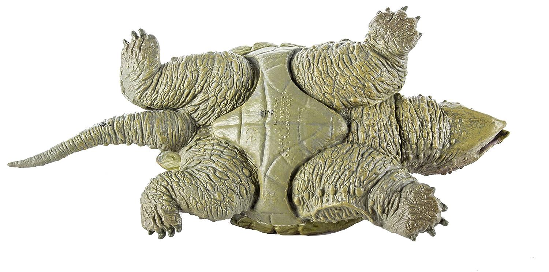 Warning turtles amp tortoises inc - Warning Turtles Amp Tortoises Inc 7