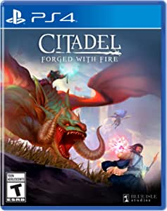 Citadel: Forged with Fire Playstation 4