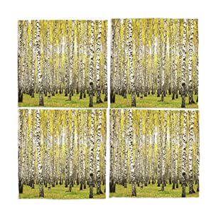 Naanle Autumn Forest Washable Placemats 12 X 12 Inches Set of 4 Place Mats for Dining Table