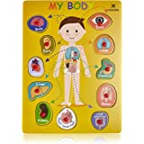 Wooden Peg Puzzle, My Body - Inside - Learning Educational Pegged Puzzle for Toddler & Kids (11 pcs) Gleeporte
