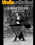 A Bright Cold Day [Fashion Photo Book] (English Edition)