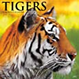 Tigers 2017 Wall Calendar
