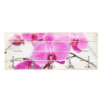 Bilderwelten Perchero de Madera - Close-up of Orchid ...