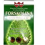 FORSKOLINA WINTER 15 cpr a base di coleus forskohlii titolato al 40%