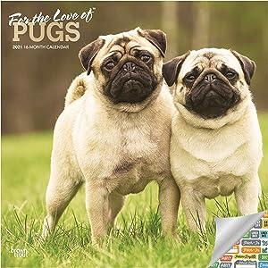 Pug Calendar 2021 Bundle - Deluxe 2021 Pugs Wall Calendar with Over 100 Calendar Stickers (Dog Lover Gifts, Office Supplies)