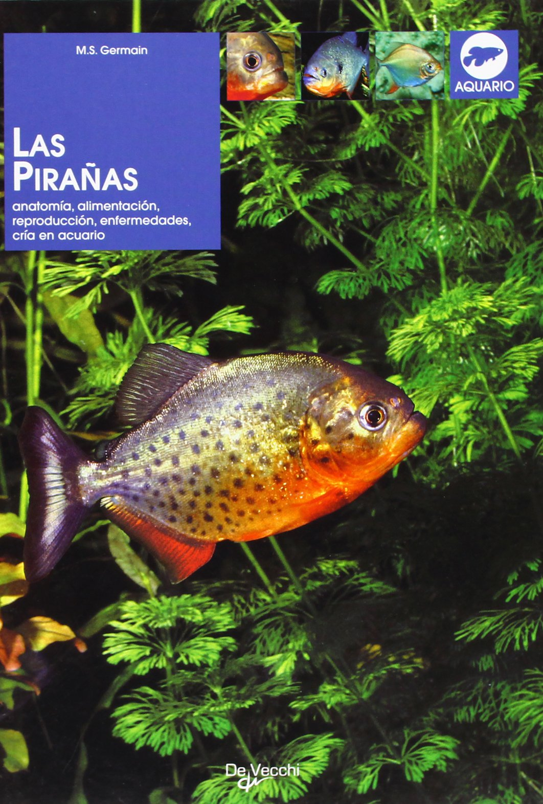 Las piranas (Spanish Edition) (Spanish) Paperback – March 1, 2009