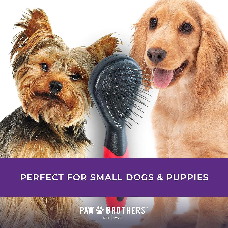 Ryans Pet Supplies Paw Brothers Mini Soft Pin Brush